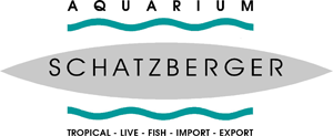 Aquarium Schatzberger | Tropical - Live - Fish - Import - Export